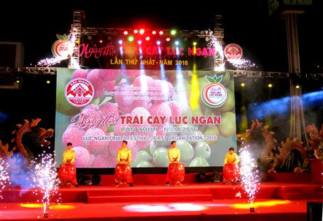 Khai mac Ngay hoi trai cay Luc Ngan lan thu nhat 2016 - Anh 1