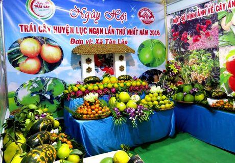 Khai mac Ngay hoi trai cay Luc Ngan lan thu nhat 2016 - Anh 4