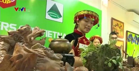 Tro tai pha che tra trong cuoc thi Tea Masters Cup Viet Nam 2016 - Anh 1