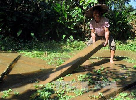 Chuyen o re cua nguoi Thai o Lai Chau - Anh 1