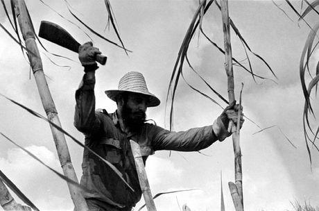 Cuoc doi day mau sac cua Cuu Chu tich Cuba Fidel Castro - Anh 12