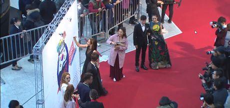 Vo chong Ly Hai-Minh Ha, Chi Pu gay an tuong tren tham do WebTV Asia Awards 2016 - Anh 9