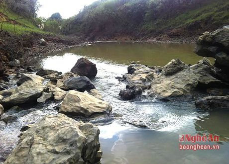 Dac san oc buou den o Do Luong - Anh 1
