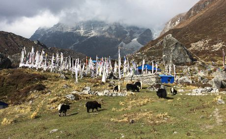 Phuot thu Viet di bo 3 ngay den ngoi lang xa xoi nhat Nepal - Anh 9