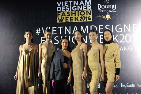 Dan sao Viet hoi ngo tai dem mo man Vietnam Designer Fashion Week 2016 - Anh 1