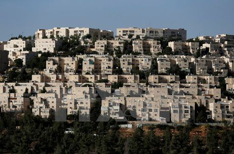 Israel len an Phap phan biet hang hoa xuat xu tu cac khu dinh cu - Anh 1