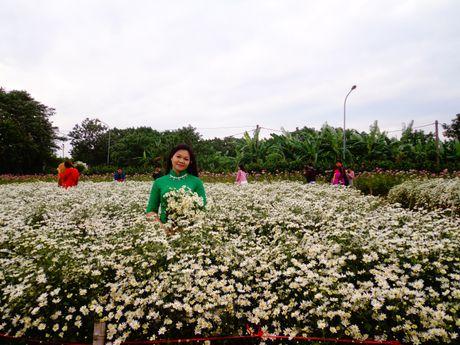 Nguoi Ha Noi ru nhau di chup anh cuc hoa mi - Anh 8