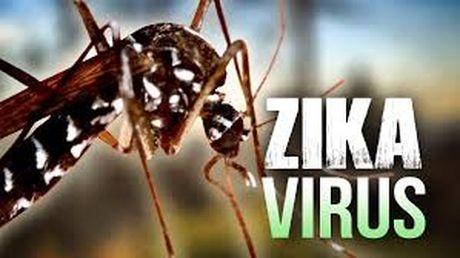 Tay Ninh la tinh thu 8 xuat hien Zika tai Viet Nam - Anh 1