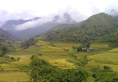Bai du thi: Mot lan lam 'Tay ba lo' - Anh 1