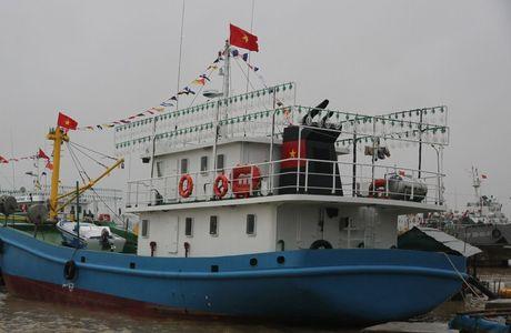 Quang Tri: Tau 67 vuon khoi, thang cao diem thu nhap hon 1,2 ti dong - Anh 1