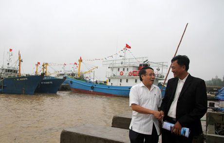 Quang Tri: Tau 67 vuon khoi, thang cao diem thu nhap hon 1,2 ti dong - Anh 3