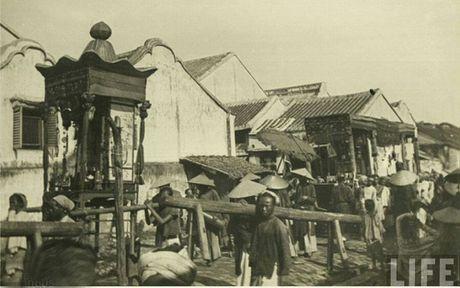 Viet su Xu Dang Trong: Nen kinh te, thuong mai thoi chua Nguyen - Anh 1