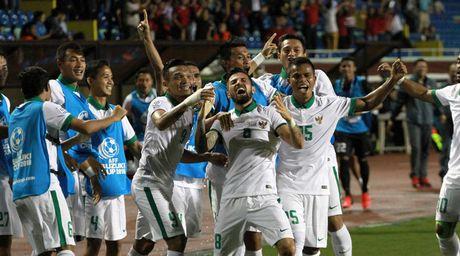 Alfred Riedl tin Indonesia se ha Viet Nam de vao chung ket - Anh 1