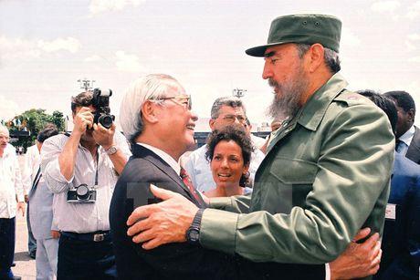 Hinh anh: Lanh tu Cuba Fidel Castro va cac nha lanh dao Viet Nam - Anh 6