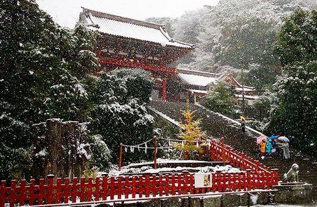 Tokyo hoa 'xu so than tien' trong ngay tuyet roi - Anh 12