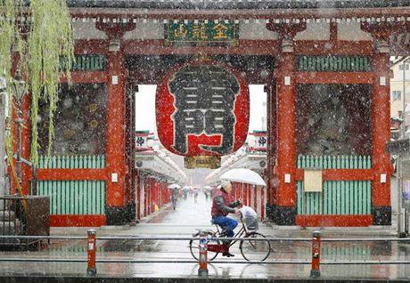 Tokyo hoa 'xu so than tien' trong ngay tuyet roi - Anh 13