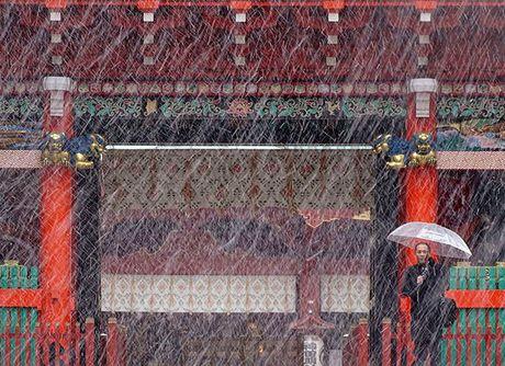 Tokyo hoa 'xu so than tien' trong ngay tuyet roi - Anh 14