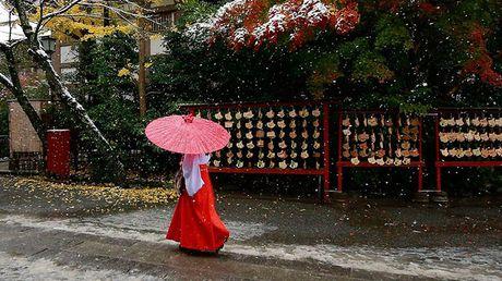 Tokyo hoa 'xu so than tien' trong ngay tuyet roi - Anh 1
