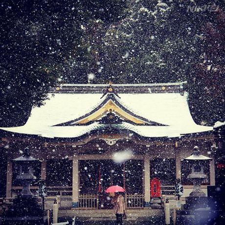 Tokyo hoa 'xu so than tien' trong ngay tuyet roi - Anh 4