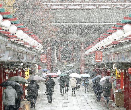 Tokyo hoa 'xu so than tien' trong ngay tuyet roi - Anh 7