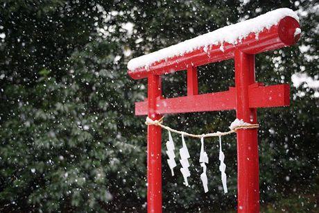 Tokyo hoa 'xu so than tien' trong ngay tuyet roi - Anh 9