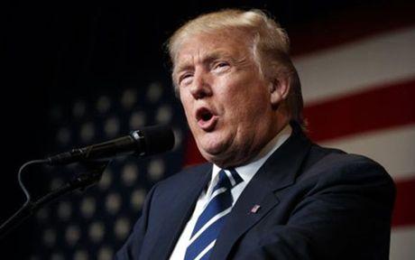 Tong thong dac cu Donald Trump: No luc doi kiem lai phieu la 'lo bich' - Anh 1