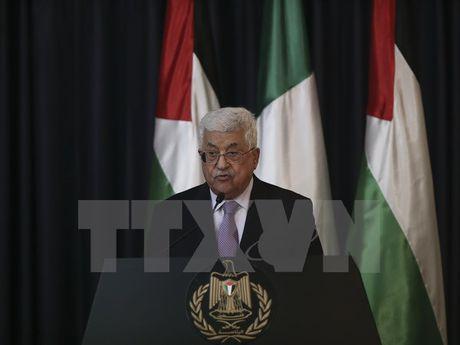 Palestine: Phong trao Hamas va Jihad nhan loi du dai hoi dang Fatah - Anh 1