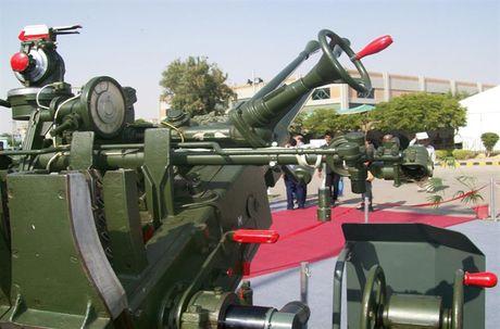 Nang cap phao phong khong 37mm, Pakistan di sau Viet Nam - Anh 2