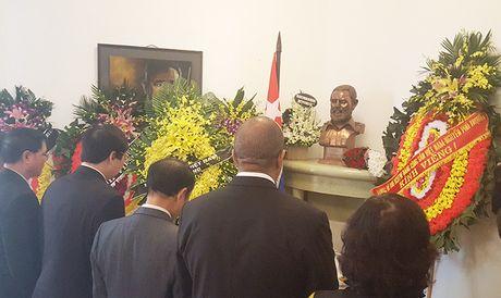 Hoi Nha bao Viet Nam vieng lanh tu Fidel Castro - Anh 1