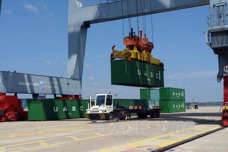 Cang container quoc te Tan Cang – Cai Mep don 'teu' hang thu 1 trieu - Anh 1