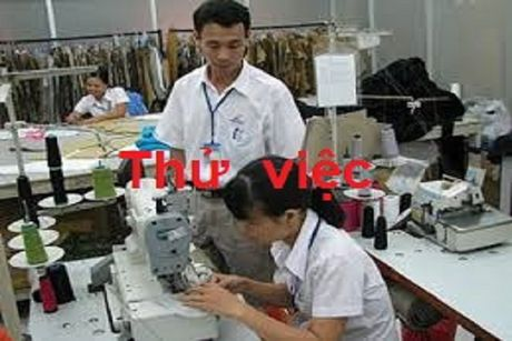 Quy dinh ve thoi gian, muc luong thu viec nguoi di lam can biet - Anh 1