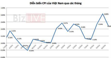 Gia luong thuc, y te, xang tiep tuc day CPI thang 11 tang 0,48% - Anh 1