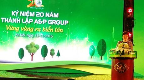 Ha Noi: A&P Group ky niem 20 nam thanh lap - Anh 2