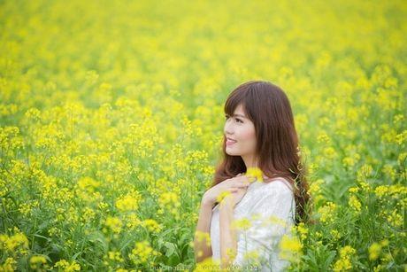 'San' anh dep tai canh dong hoa cai vang ruc o que lua Thai Binh - Anh 6