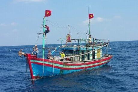 Quang Ngai: Them mot tau ca bi hong may, 7 ngu dan keu cuu - Anh 1