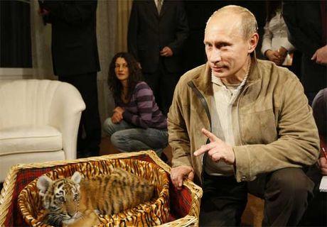 Bo suu tap qua tang la thuong cua ong Putin - Anh 2