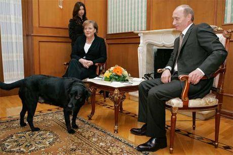Bo suu tap qua tang la thuong cua ong Putin - Anh 3