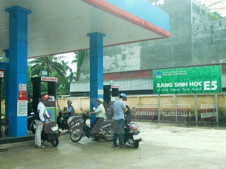 Thong tin thay the xang RON92 bang xang sinh hoc E5 la khong chinh xac - Anh 1