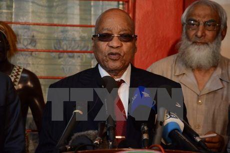 Nam Phi: Dang ANC cam quyen ung ho Tong thong Zuma tai nhiem - Anh 1