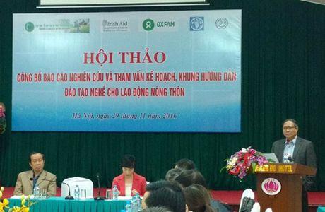 Tang cuong dao tao nghe cho lao dong nong thon - Anh 1
