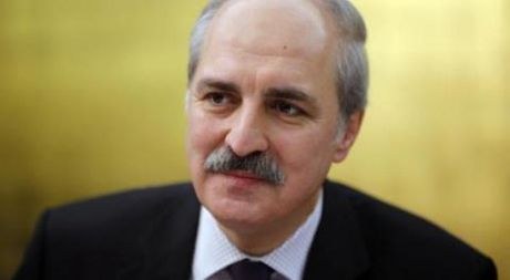 Quan Assad tan cong linh Tho Nhi Ky: Cai co cua Ankara? - Anh 1