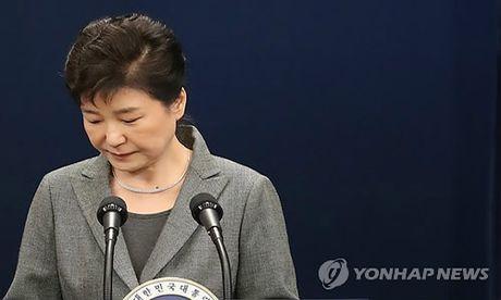 Tong thong Han Quoc Park Geun-hye tuyen bo san sang tu chuc - Anh 1