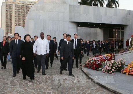 Chu tich Quoc hoi Nguyen Thi Kim Ngan vieng lanh tu Cuba Fidel Castro - Anh 1