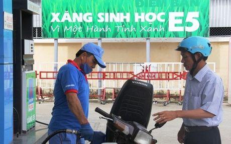 Xang sinh hoc E5 se thay the toan bo xang khoang RON 92 tu 2017 - Anh 1