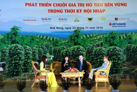 VietABank tai tro von vay cho cac ho nong dan trong ho tieu - Anh 1