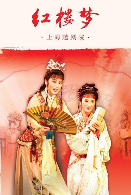 5 phien ban chim trong quen lang cua phim kinh dien noi tieng Hong Lau Mong - Anh 13