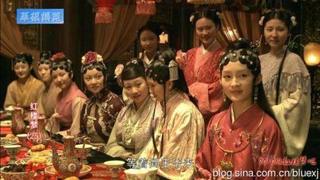 5 phien ban chim trong quen lang cua phim kinh dien noi tieng Hong Lau Mong - Anh 17
