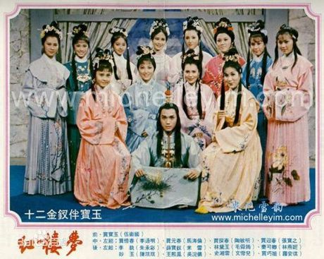 5 phien ban chim trong quen lang cua phim kinh dien noi tieng Hong Lau Mong - Anh 6