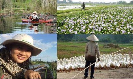 Bai du thi: Chu du dai pho My Tho - Huong vi kho quen - Anh 1