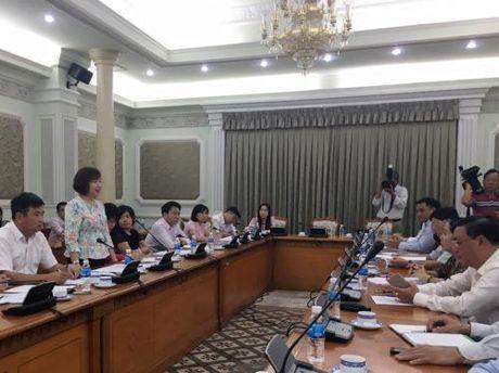 Tp. Ho Chi Minh dam bao on dinh thi truong Tet Dinh Dau 2017 - Anh 1